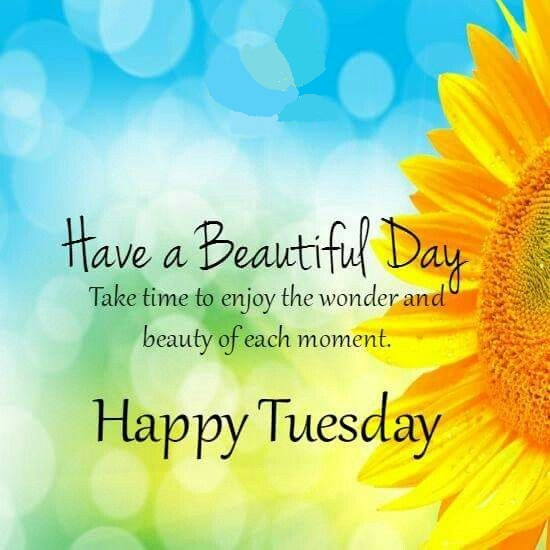 Happy Tuesday Funny and Inspirational Quotes – Only Messages